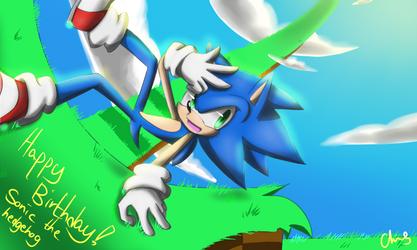 Happy Birthday! Sonic!