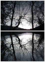 Two Reflections
