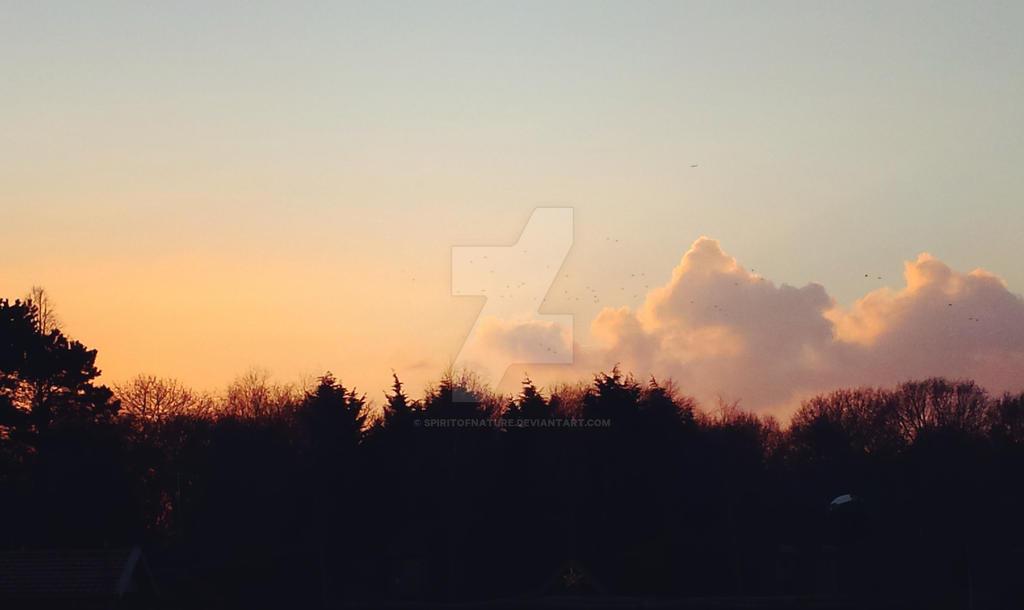 Horizon by SpiritOfNature