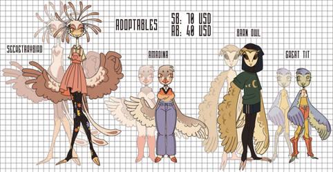 birds adoptables [OPEN 2/4]