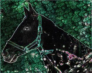 Kungreen Horse
