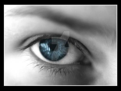 Eye of the Photographer II by hawkboi