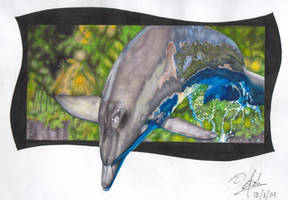 Marker - Dolphin by Shahtrughna