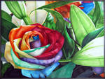 Marker - Rose