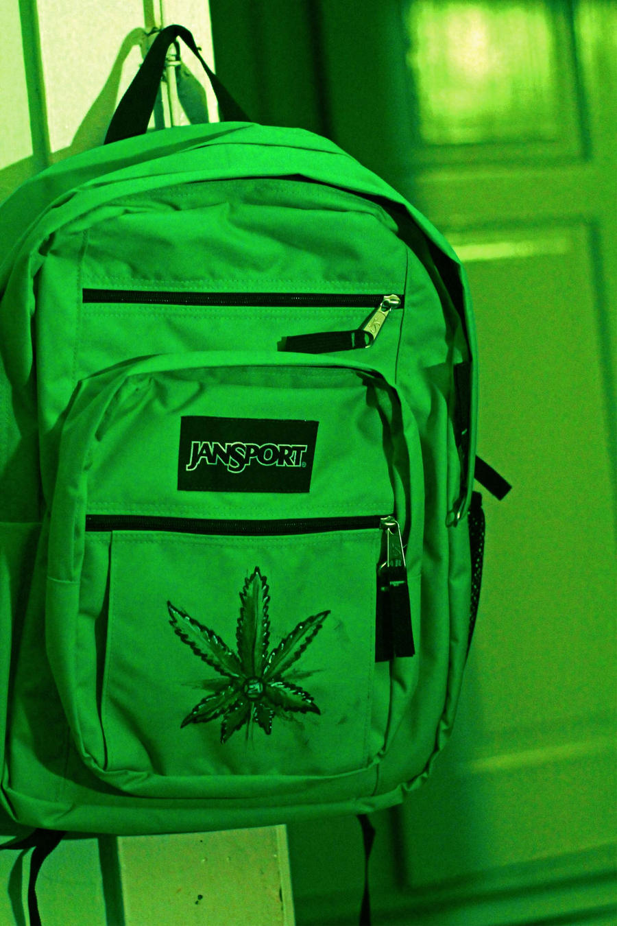 Customize Jansport Backpacks | Frog Backpack