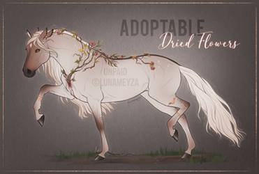 Adoptable - Dried Flowers - OPEN