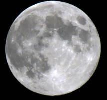 2012 Moon-Vacation