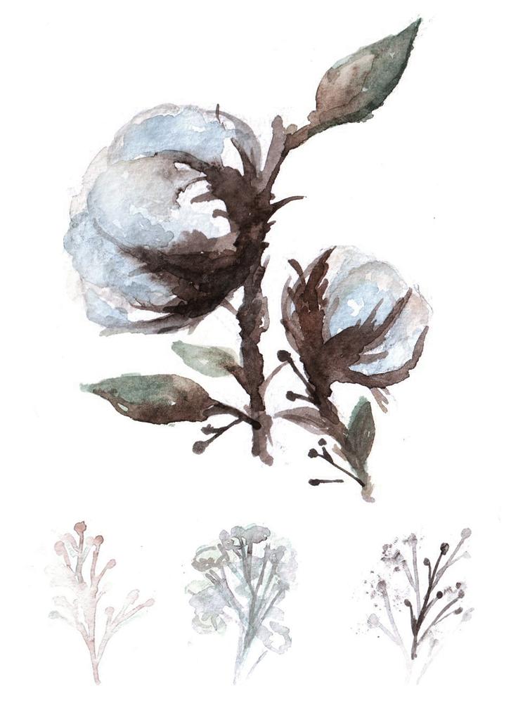 Cotton watercolor by RianaG
