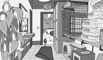 Background Layout: Back of Pet Shop