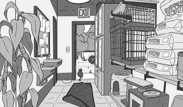 Background Layout: Back of Pet Shop