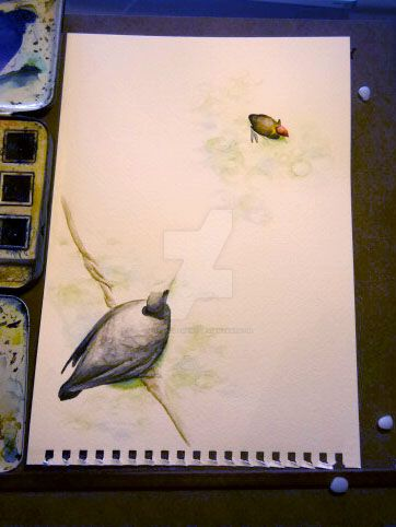 Watercolour - Coot and baby by entanglement