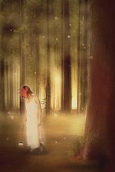 Forest by jcLuna