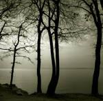 islands... by Kaarmen