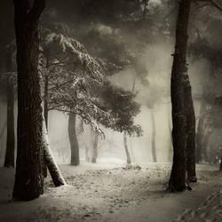 Snow in Porec...