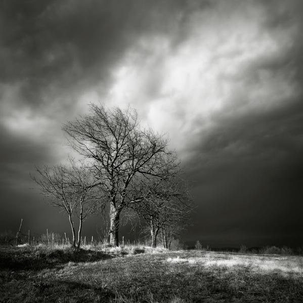 Istrian landscape X... by Kaarmen