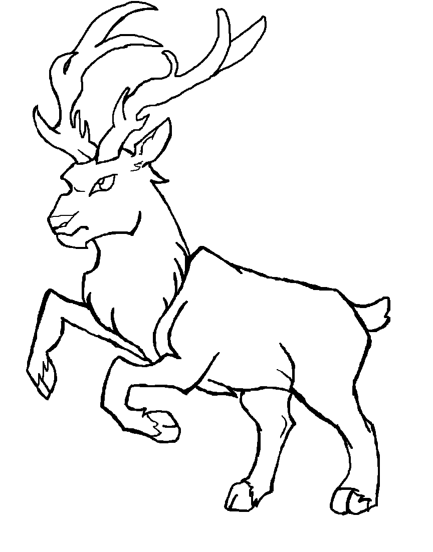 Line Art Deer : Deer lineart by evawolferina on deviantart