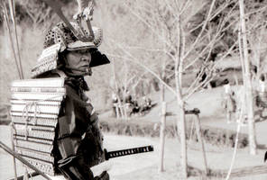 Samurai by Pinbacking