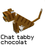 Tabby chocolate's cat by Scotis