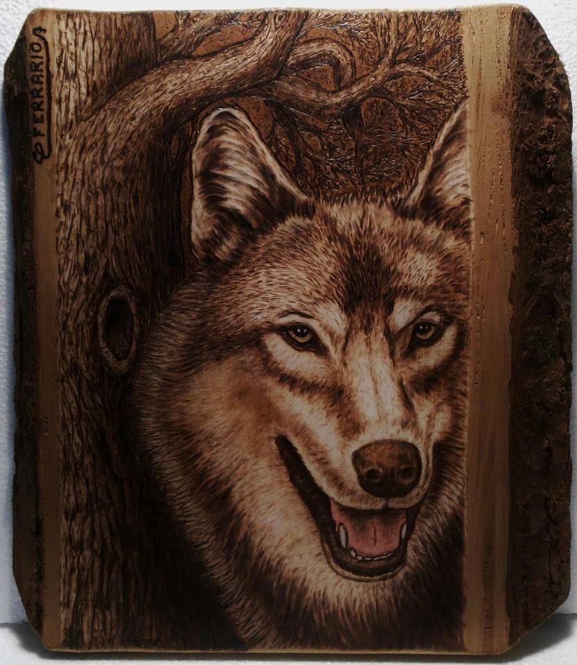 Lone Wolf by CarloFerrario1954