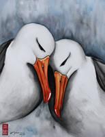 Albatross by rchaem
