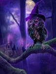 Harry owl