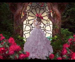 Dreamer by VanessaPadua