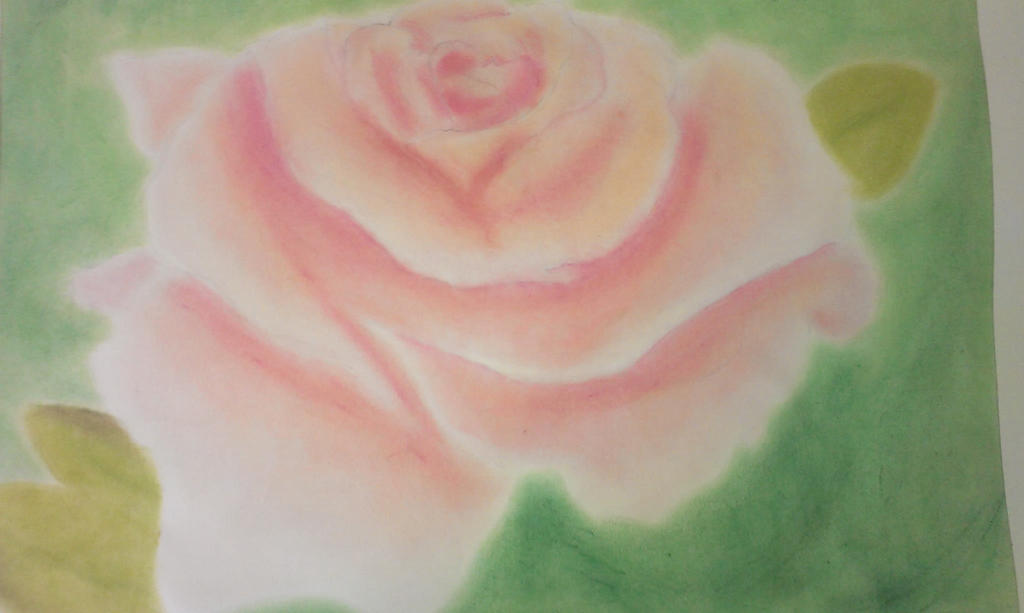 Pastel Rose by Shaylynn14