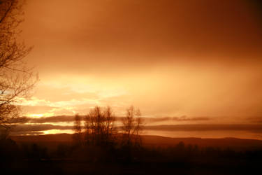 Copper Haze by screwyphotographer