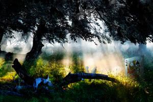 Alice in Wonderland II by jrdnG