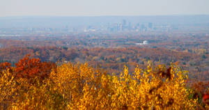 Hartford in the Fall