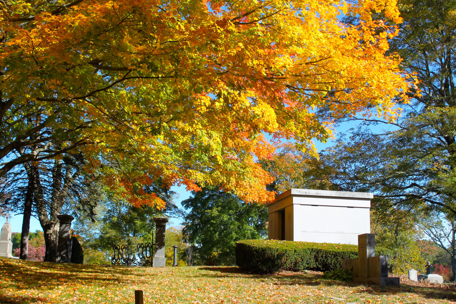 Autumn in the Cemetery by WilliamJCovello