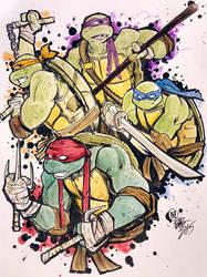 Mean Green Ninja Team