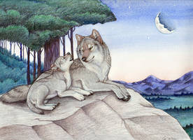 Lunar Baby by Yote