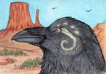 The Healing Raven