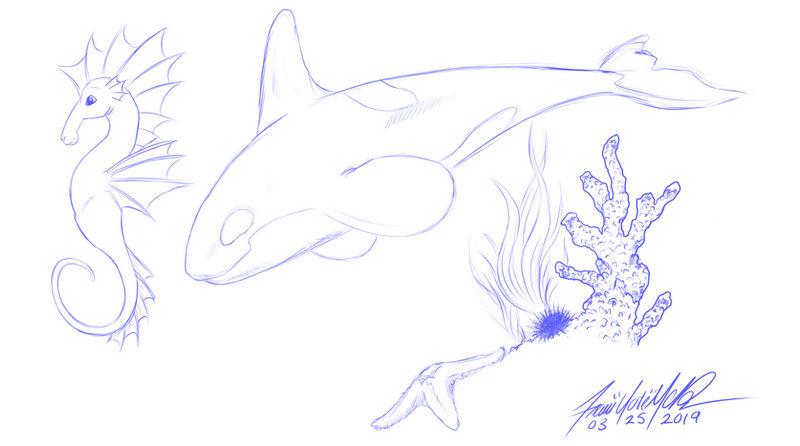 Ocean Doodles