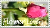 Stamp 2 by glykeria by flower-lovers