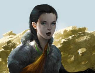 Winterwolf by kainthebest