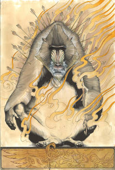 Mandrill on Fire