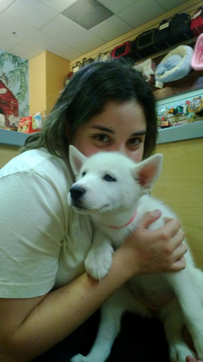 Luna and white husky pup! by videogamer500