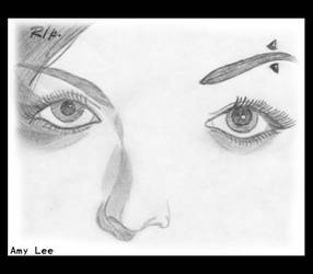 Amy Lee:Eyes and nose