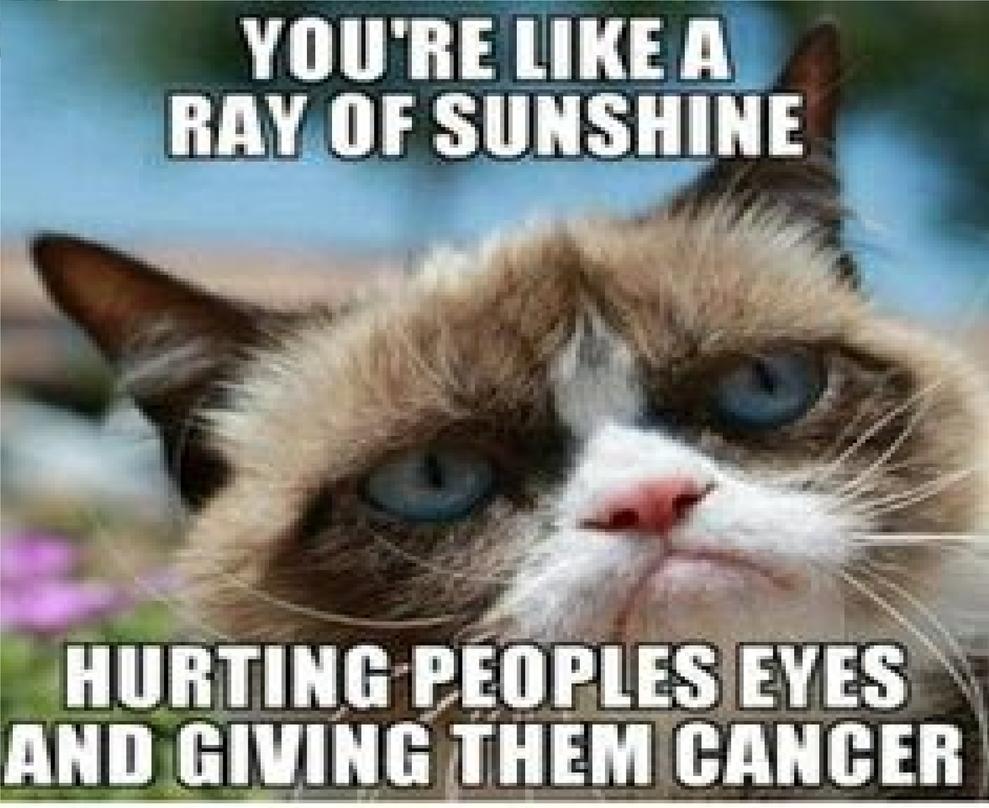 Sunshine Meme