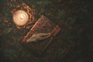 Book of nature by sxsvexen