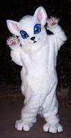 Kitten Fursuit by LilleahWest