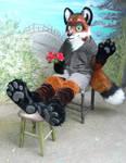 Finaly, a fox