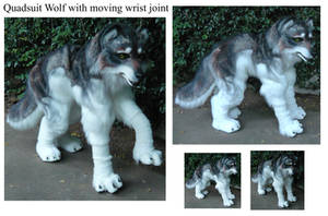 quadsuit wolf V2 w arm joints by LilleahWest