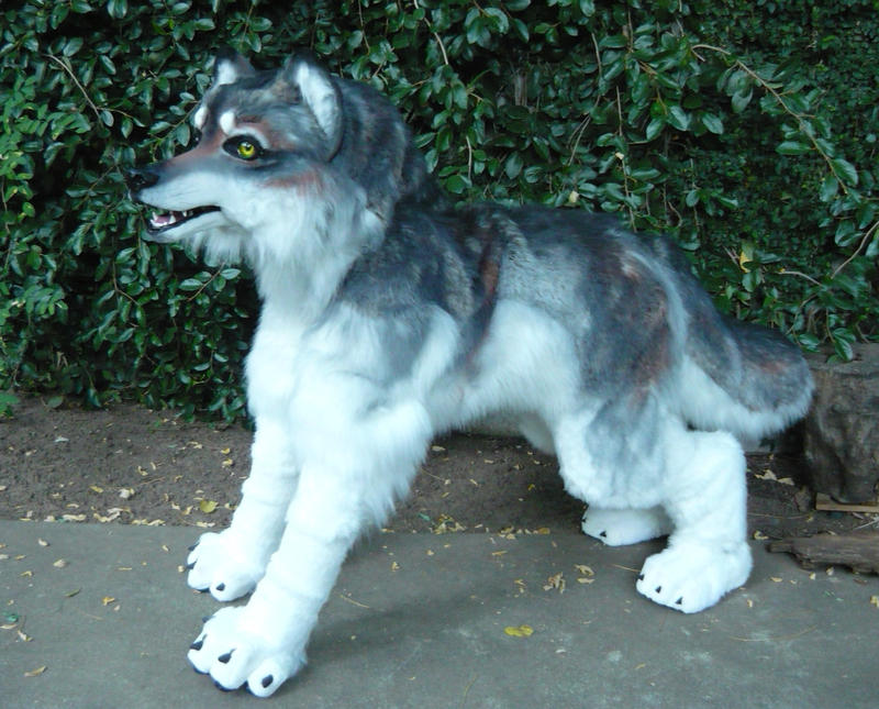 Realistic Wolf Fursuit