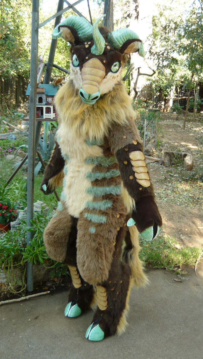 Fullsuits Average Cost $3000$5000 (more For Most Dragons)