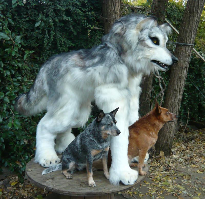 Realistic Wolf Quad 3 How Do You Make Those Animal