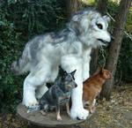 pale wolf quadsuit