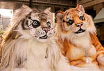 beastcub creations : tigers